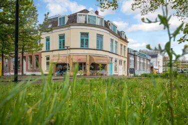 daalsebuurt, Waarom wij in de Daalsebuurt zijn gaan wonen? !, Makelaar in Utrecht